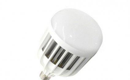 25 Watt Indoor High Power LED