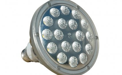 PAR 25 LED bulbs
