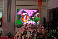 Indoor LED Screens & Indoor LED showcases items
