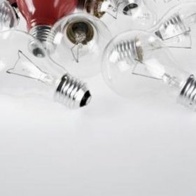 bulbs are available in a variety of sizes and shapes.