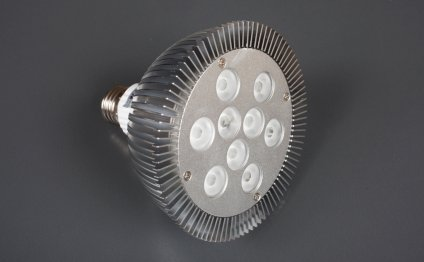 Single LED light bulbs
