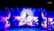 P25 LED curtain for stage backdrops screen&China LED