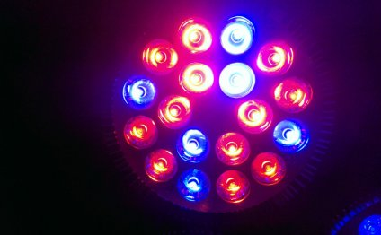 LED Grow Lights Wholesale